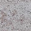 bielo-hnedá